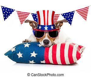 7月4日, 独立, 犬, 日