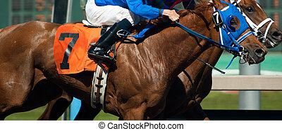 7, ジョッキー, 写真, 馬, 横切って, 終わり, レース, 線, 来なさい, ライダー