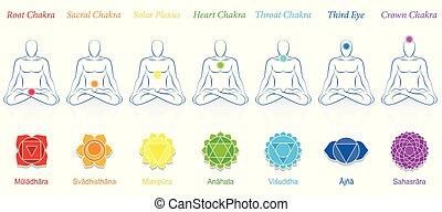7, chakras, 色, sanskrit, 人