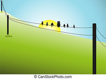 71-Birds on a Wire Scene