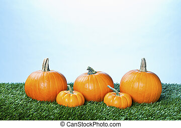 View of halloween pumpkins arranged in a row against blue background.