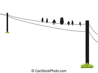 72-Birds on a Wire Silhouette - A selection of birds on a...