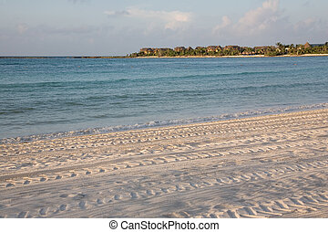 77, playa, salida del sol, méxico