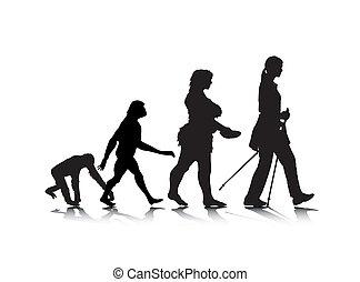 8, evolução, human