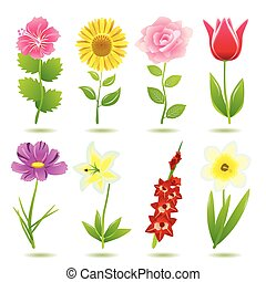 8, fleur, ensemble, icônes