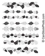 8, fronteras, con, bellotas, y, hojas