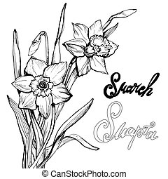 8 March greeting card wifh hand drawn flowers Daffodil, Narcissus. Calligraphic hand written phrase in Russian and English language For design greeting card and celebration banner. Vector Illustration
