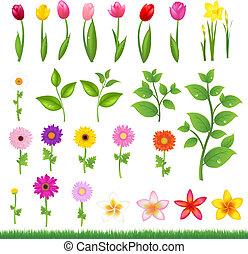 8, profili di fodera, fiore, -