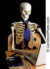 8, trabajo, esqueleto