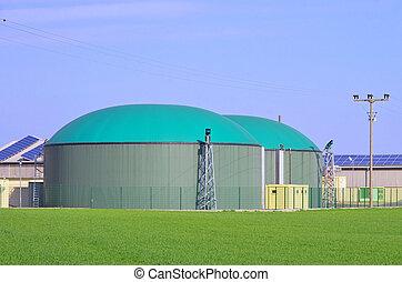 82, roślina, biogas