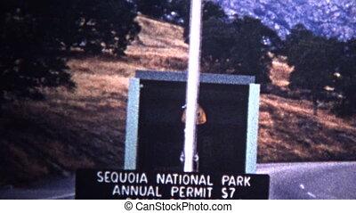 (8mm Vintage) 1966 Sequoia National - Original vintage 8mm...