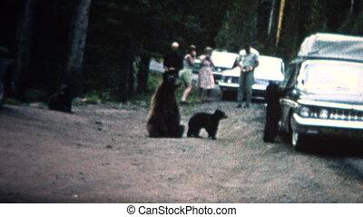(8mm Vintage) 1968 People Feeding - Original vintage 8mm...