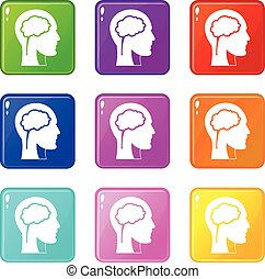 9, cérebro, conjunto cabeça, ícones