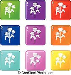9, fiori, set, icone