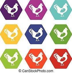 9, poulet, ensemble, vecteur, icônes