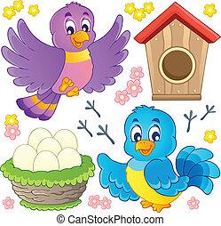 9, tema, pássaro, imagem