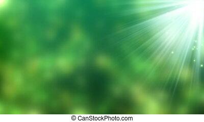 _Green yellow babules