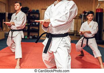 ação, marcial, treinamento, artes, luta