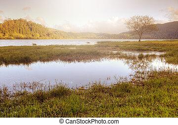 açores, paisagem, lago, portugal, calmo