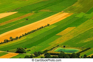 aéreo, campos, verde, vista, cosecha, antes
