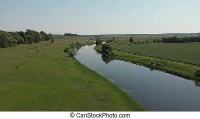 aéreo, cima, rodeado, -, árboles, praderas, río, su, bancos...