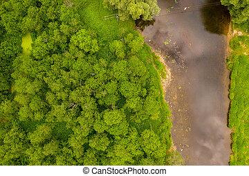 aérien, bourdon, forest., découpage, creux, rivière, vue