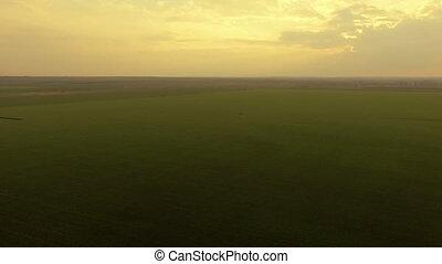aérien, champs, clair, coucher soleil, fond, vert, vue