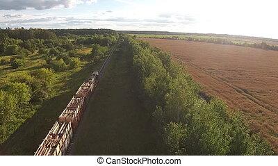 aérien, chargé, arbres, train, par, forêt, promenades, vue