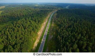 aérien, conduite, voiture, bois, route, vue