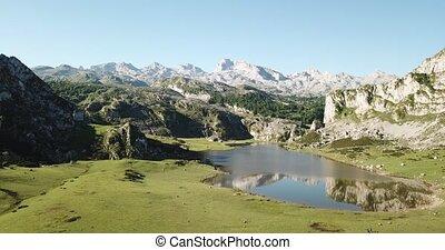 aérien, covadonga, de, montagne, espagne, vue, panoramique, picos, lacs, europa, gamme