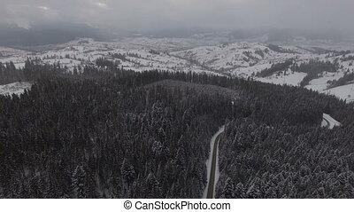 aérien, hiver, conduite, cars., panoramique, forêt, vue., route