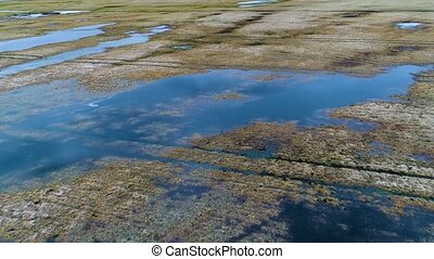 aérien, inondé, printemps, lacs, champs, vue