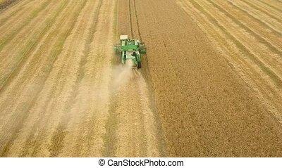 aérien, moissonneuse, saison, vue, récolte, blé, rassemble, grain, champ, combiner, sunset., récolte
