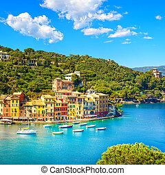 aérien, portofino, liguri, panoramique, luxe, village, vue., repère