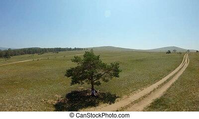 aérien, séance, pays, draws., arbre, champ, sous, girl, route, vue