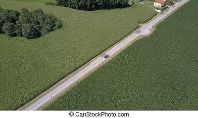 aérien, voiture, métrage, entre, en mouvement, noir, fields., vert, long, route ouverte