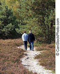 aînés, age moyen, gens marcher, dans, forest.