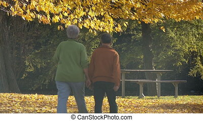 aînés, automne, marche, garez banc