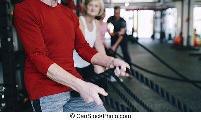 aînés, entraîneur, personnel, gymnase, exercisme, bataille, cordes