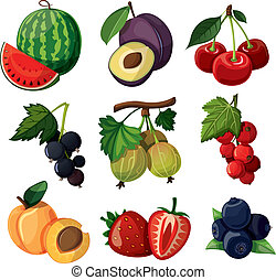 a, קבע, של, טעים, berries.
