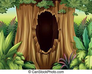 a, 大きい, トランク, の, a, 木, ∥で∥, a, 穴