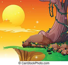 a, 大的樹, 近, the, 懸崖