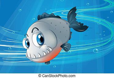 a, 比拉魚, 在下面, the, 海