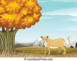 a, 獵豹, 近, the, 大的樹