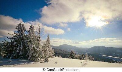 a, 강한, 겨울의 태양