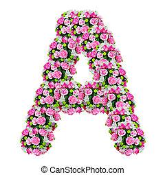 a, 꽃, 알파벳, 고립된, 백색 위에서, 와, 클리핑패스