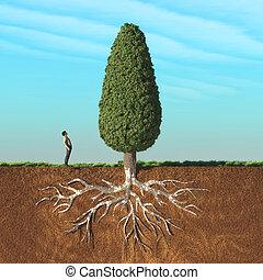 a, 남자, 위로 모양, a, 큰 나무