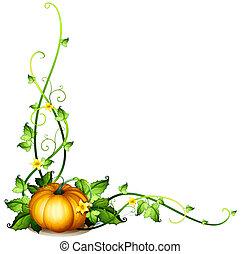 a, 호박, 포도나무, 장식