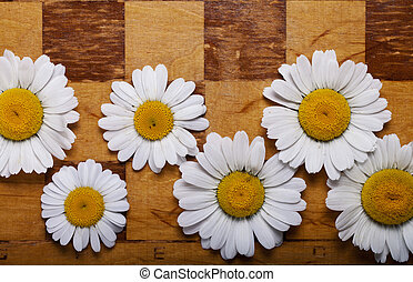 a Abstract flowers chessboard background