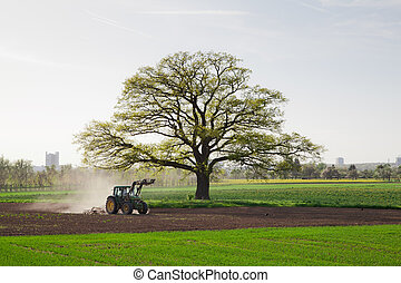 A agricultural tractor is plowing the field